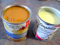 Does Condensed Milk Go Bad