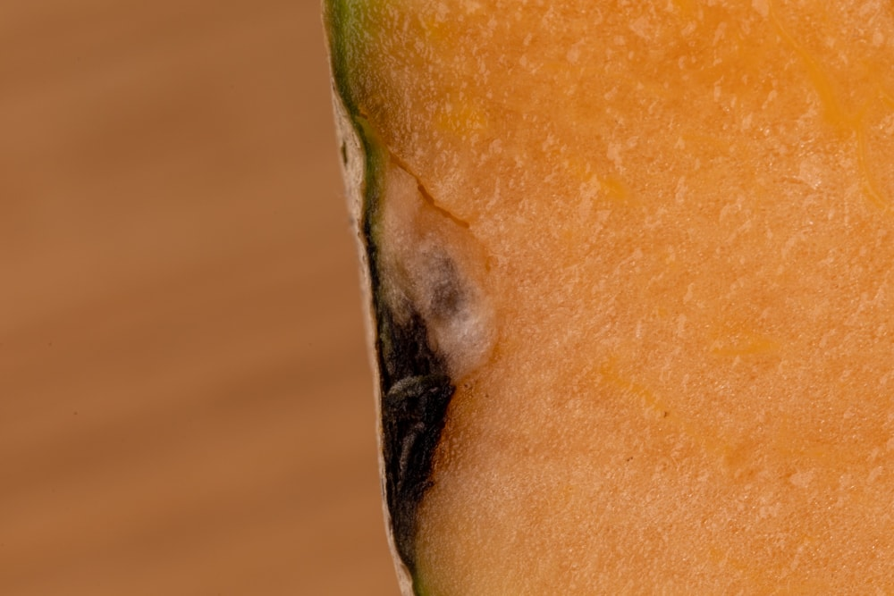 Cantaloupe black area under the rind