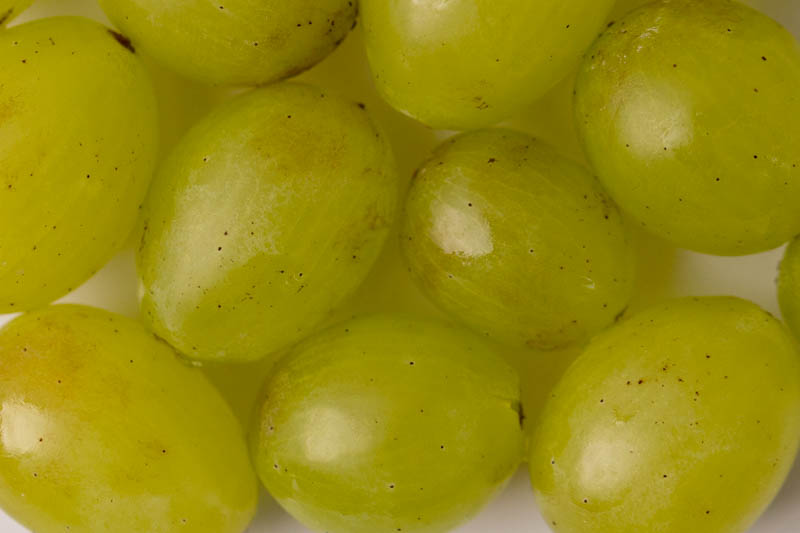 Grapes off the stem