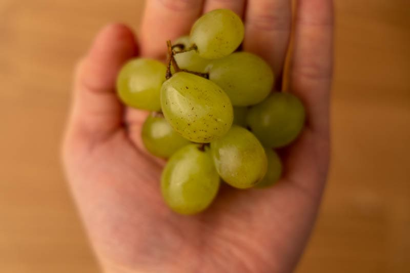 Grapes on palm