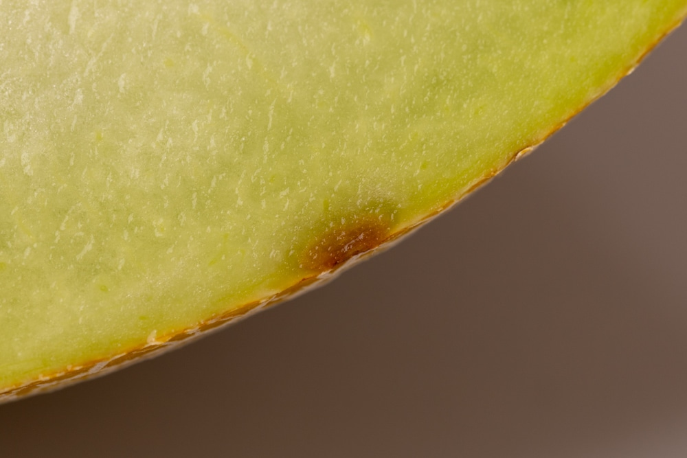 Honeydew: brown spot on the rind