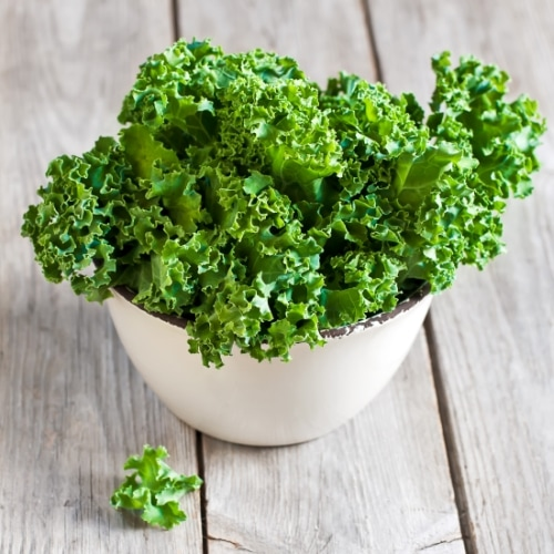 Fresh green kale in a white ceramic bowl