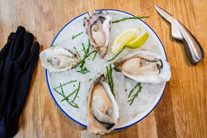 Oysters on a white plate