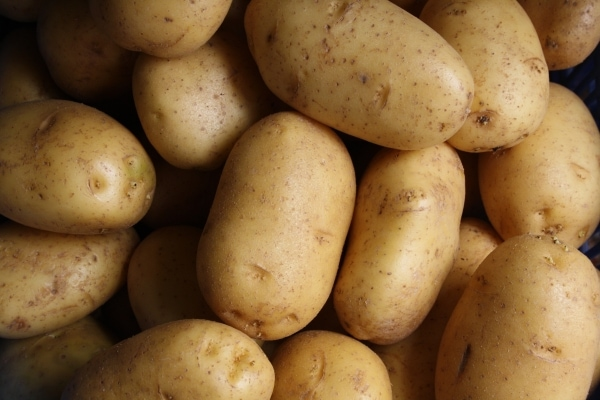 Pile of raw potatoes