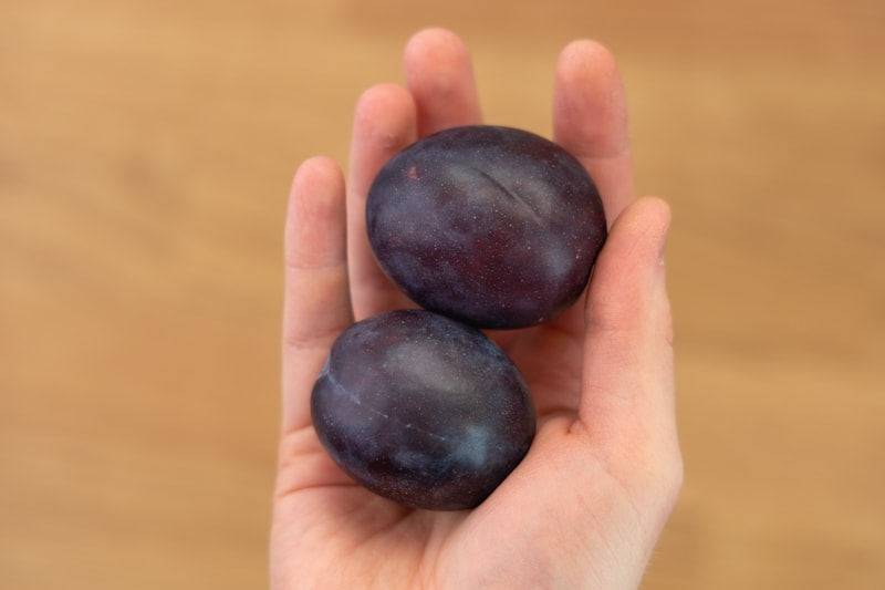 Plums in hand