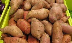 Sweet Potatoes on Sale